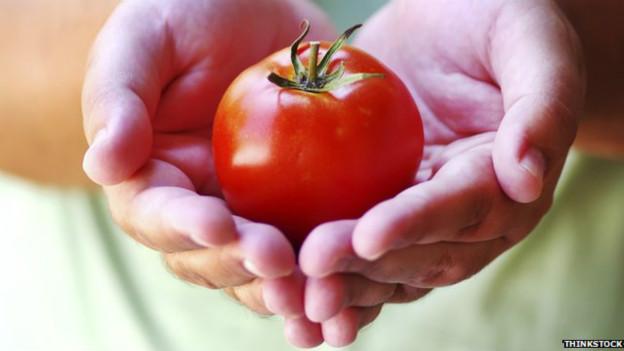 tomate_cancer_prostata