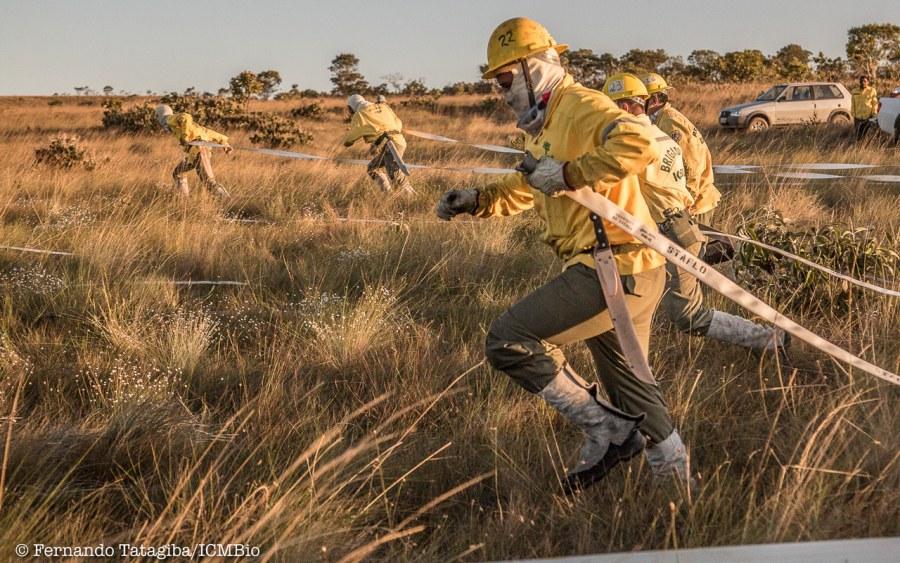 Processos de seleção para a formação das Brigadas de Prevenção e Combate a Incêndios Florestais