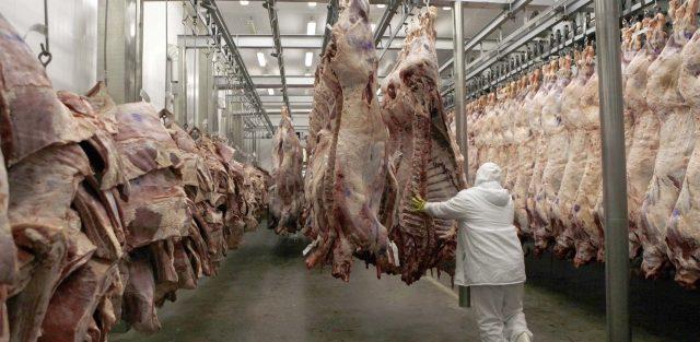 Churras | Está proibido matar vacas